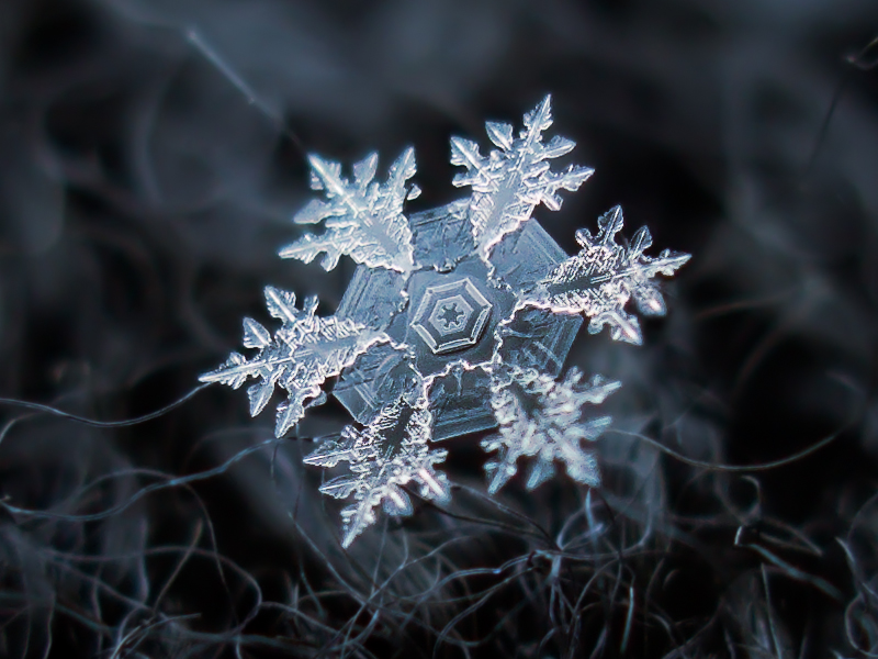 snowflake by chaoticmind75 d5nmn311