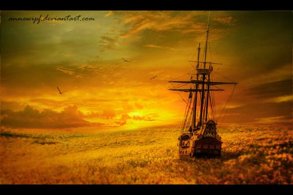 MeoŞiir - Çiçek Denizleri