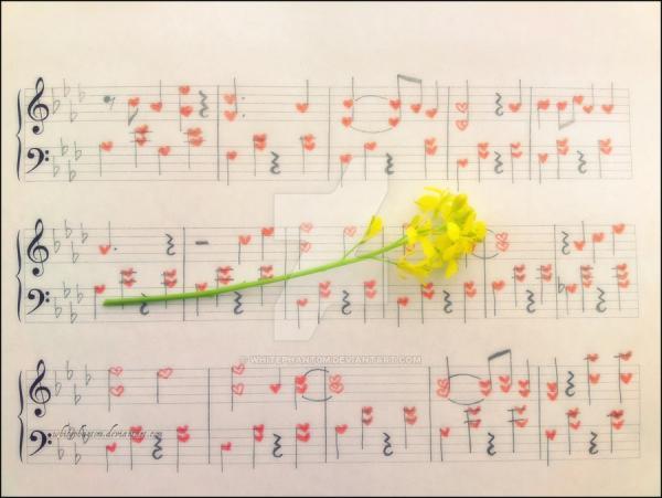 MeoAfo - Aşkın Notaları