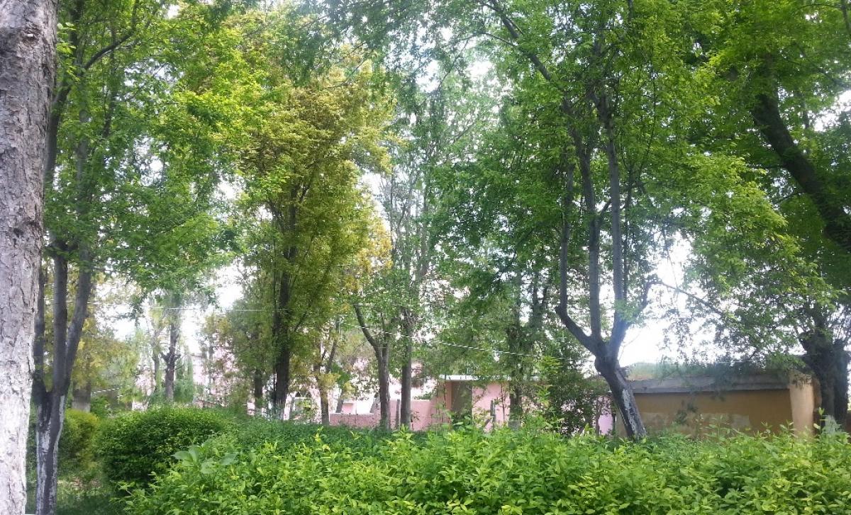 MeoÖykü - Köy Öğretmen Parkı