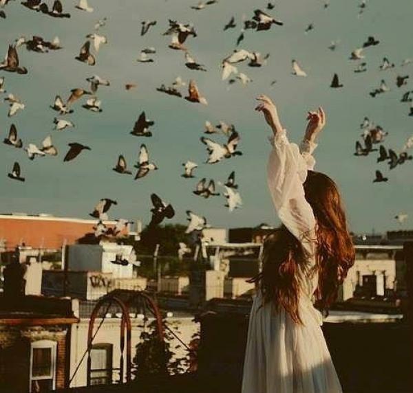 MeoAfo - Kuşlar Kadar Özgür